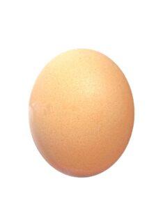 Impronta idrica uova
