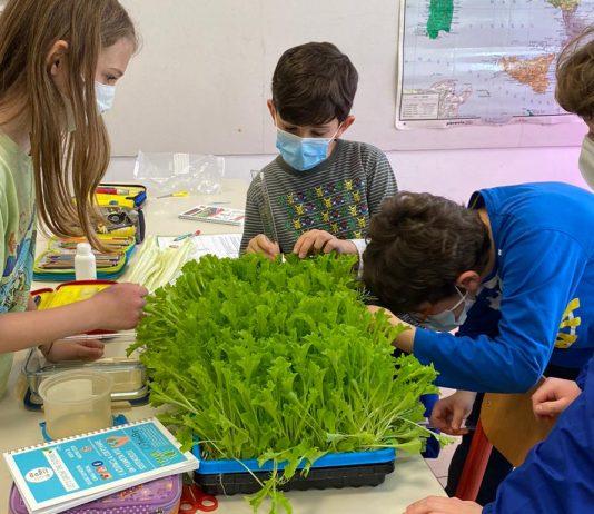 Vertical Farming Education Lab